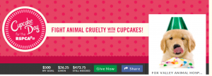fox valley rspca cupcake day