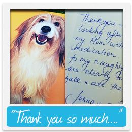 Testimonail for FVAH - Silky Terrier