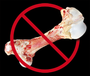 bones and dogs don't mix