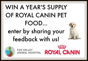 fox valley veterinary clinic wahroonga customer survey